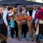 Аланья, Турция, фото. Фестиваль туризма и искусств. Катание на верблюде.