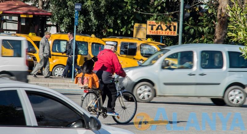 Аланья фото. Велосипеды в Аланье