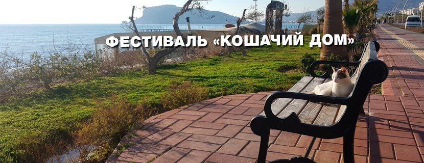 """Фестиваль """"Кошачий дом"""" - праздники в Аланье"""