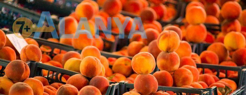 Турция, Аланья. Фрукты в Августе. Фото, цены.