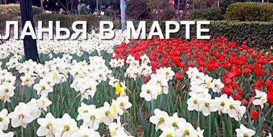 Аланья в марте