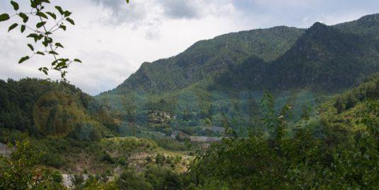 Турция, Аланья. Фото. Река Дим чай Dim Çayı. Панорама гор.