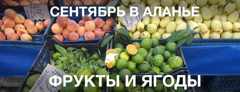Сентябрь в Аланье цены на фрукты и овощи на рынках